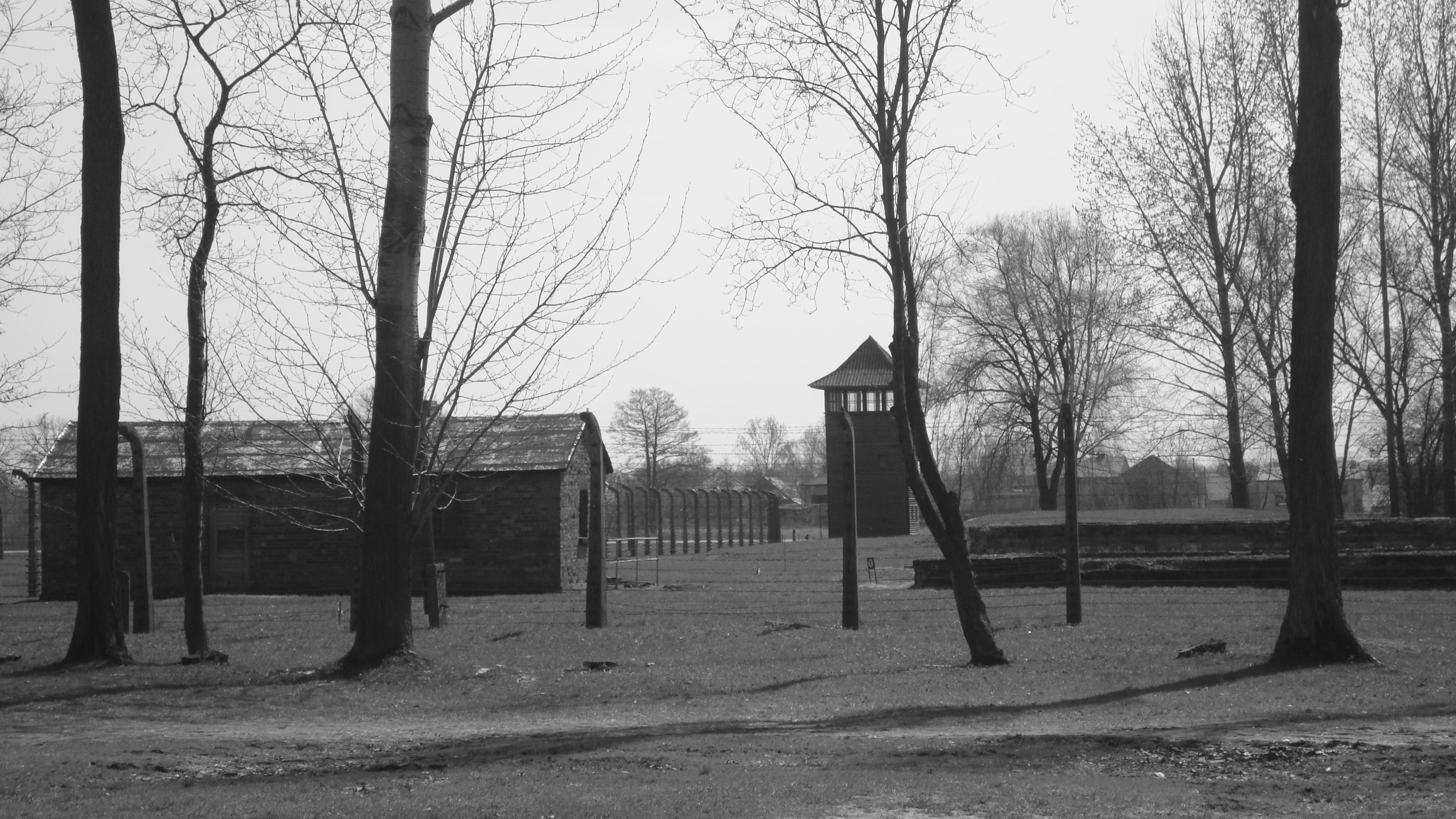 Birkenau (campo di betulle)